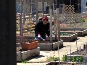 Behold, I am digging!