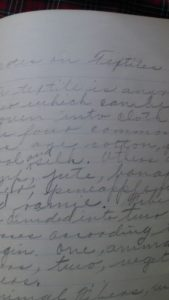 There is also a short essay on textiles. Check out that handwriting!