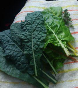 Kale, chard, thyme.
