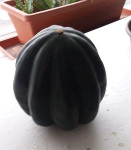 An acorn squash