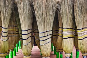 Rows of upright straw brooms.