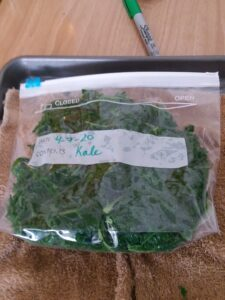 A frozen bag of kale, labeled with the date and contents.